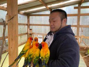 カラフルな鳥がいっぱい集まってきたりする件