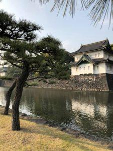 今週は皇居と赤坂御用地にいる件